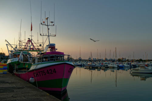 Soleil couchant sur le port de Saint Vaast la Hougue.